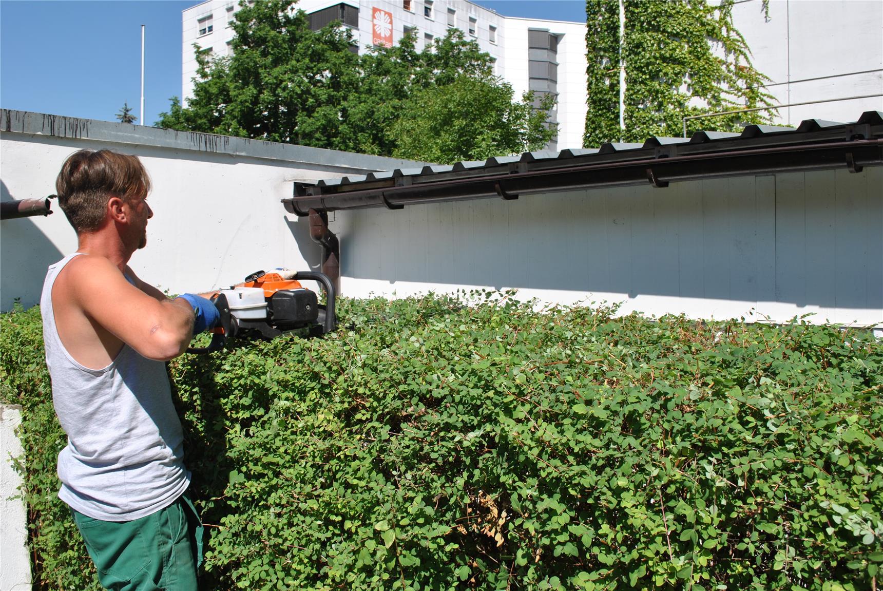 Unser Garten  Und Landschaftsbau Team Gärtner Beim Hecken Schneiden