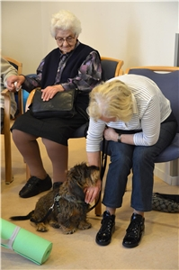 20171019_TP_Arnsberg_Therapiehund_002