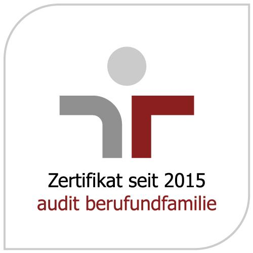 audit logo neu 2016-09
