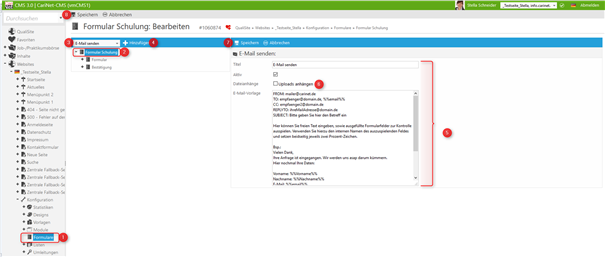 Screenshot: Formulardaten-E-Mail senden